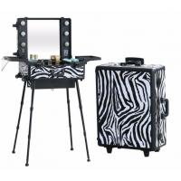 China Lighted Makeup Case With Stand , Rolling Studio Makeup Case With Lights wholesale