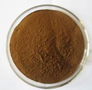 China Reishi Mushroom Extract powder 20% 30% wholesale