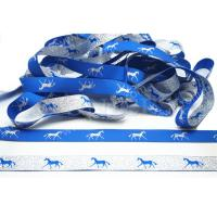 China Oeko-Tex Standard 100 hot sale high density woven ribbon for horse rugs on sale