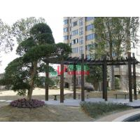 China UV Resistance Prefab Pergola Kits , Recyclable 100% Ready Made Pergola Color Stability wholesale