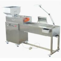 China IS-1502 Automatic Tablet Inspection Machine Automated Inspection Equipment wholesale