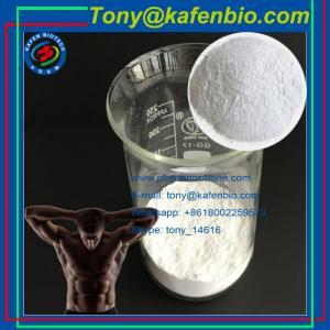 China Local Anethetic Drugs 99% Benzocaine Hydrochloride Local Anesthetic Agents Benzocaine HCL wholesale