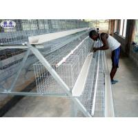 China Chicken Layer Battery Cage Dimensions Steel Wire Material Galvanized Surface wholesale