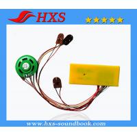 China Recording Sound Chip China Export Sound Chip For Educational Toy wholesale