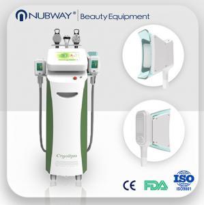 China Low price fat freezing cryolipolysis vacuum slimming beauty machine wholesale