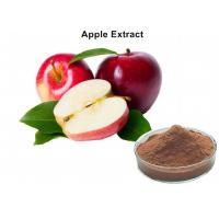 China Natural Fruit Extract Powder 80% Polyphneols Apple Extract Antioxidant Powder wholesale