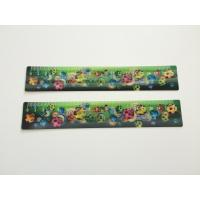 Quality PP Ruler 3d Lenticular Printing Services For Kids 0.38 mm / 0.45 mm / 0.58 mm for sale