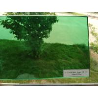 Buy cheap 6.38mm green laminated glass with 0.38mm color pvb film from wholesalers