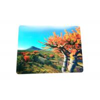 China Eco - Friendly Custom Lenticular Printing 3D PP / PVC Table Mat wholesale