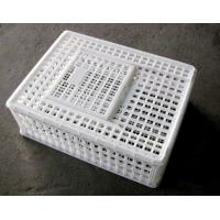China Plastic Low Cost Circulating Moving poultry crate/Cage for chicken-sliding door wholesale