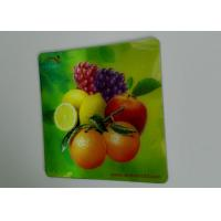 China Customizable Gifts Lenticular 3D Refrigerator Magnets Cmyk Printing wholesale