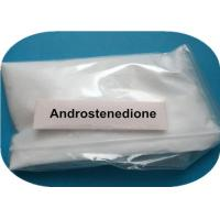 63-05-8 Raw Steroid Powder Anabolic Hormone Androstenedione Muscle Building Steroid