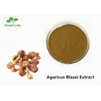 China Enhance Immunity  Agaricus Blazei Extract Powder 30% Polysaccharides on sale