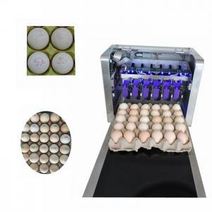 China High Resolution Food Inkjet Printer , Eggs Expiry Date Printing Machine wholesale