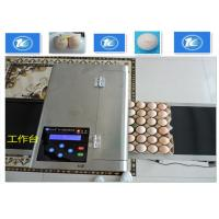 China High Resolution Egg Inkjet Date Code Printer With No Need Clean Nozzle wholesale