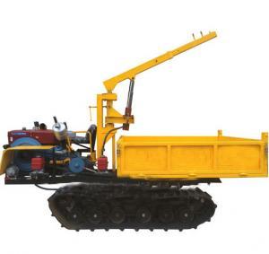 China Manufacturer Supply Crawler Lorry-Mounted Crane, Paddy Field Truck, Farm Transporter, Crawler Crane wholesale
