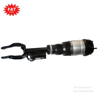 China 1663206913 1663207113 Real Front Shock Absorber Mercedes Ml Gle 250 350 wholesale