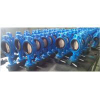 China DN250 Ductile Iron Wafer Type Butterfly Valve     PN10/16 on sale