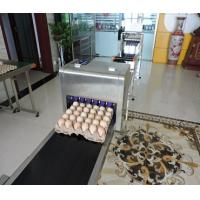 Buy cheap 600 Dpi Date Code Printing Machines , Touch Screen Egg Spray Machine from wholesalers