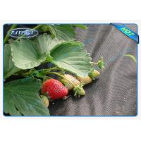 China Black Permeable Non Woven Landscape Fabric For Ground Control / Strawberry wholesale