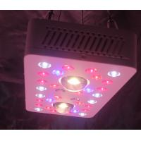 China LED Grow Lighs 205W(UV/IR) full-cycle growing from seedling to flower wholesale