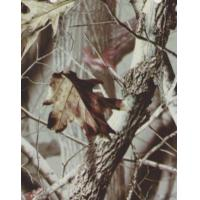 China Camo Dipping Water Transfer Printing Films on sale
