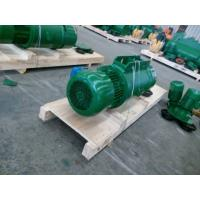 China doule lifting speed electric hoist wholesale