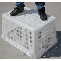 Custom plastic boxes / pallet / tray/crate/ case/ container mold, cheap