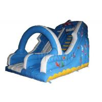 China Large Commercial Inflatable Water Slides For Adults Fireproof PVC Material Made on sale