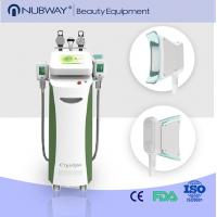 China 2 CRYO handles cryolipo fat freezing machine body slimming cool sculpting machine on sale