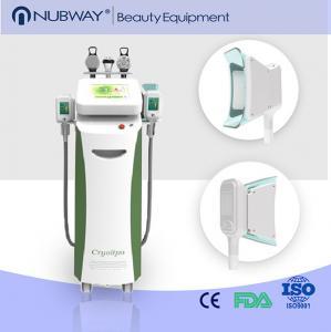 China Cryolipolysis Fat Removal Vaccuum Cryolipolysis Slimming Machine wholesale