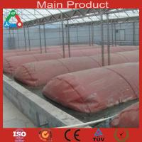 China Double membrane biogas digester for industry wholesale