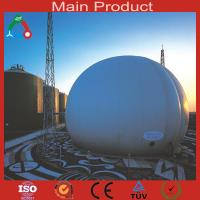 China New design large size biogas plant for industry wholesale
