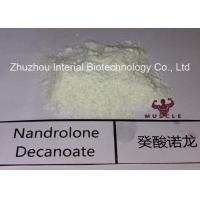 China Injectable Nandrolone Decanoate Steroid White Powder Deca for Muscle Gaining with Safe Shipping wholesale