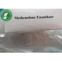 China CAS 303-42-4 White Steroid Powder Methenolone Enanthate For Muscle Growth wholesale