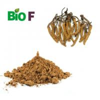 China Brown Powdered Herbal Extracts Cordyceps Sinensis Extract Powder 40% Polysaccharide on sale