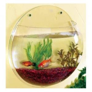 China Custom Acrylic Fish Tank , Plexiglass Wall Hanging Fish Tanks wholesale