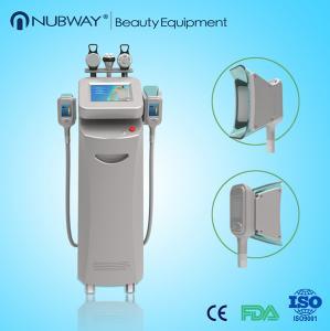 China cavitation rf vacuum cryolipolysis wholesale