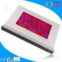 China 600W LED Grow Light Ratiotailored wholesale