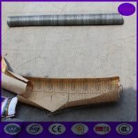 China Galvanized Chicken Wire mesh roll  for animals housing wholesale
