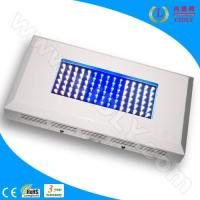 China 90W Aquarium LED Light for Coral Reef wholesale