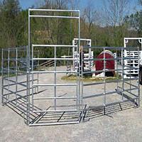China Horse Panel wholesale