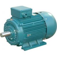 China Low Noise Asynchronous 3 Phase Induction Motor 430hp 2 Pole Electric Motor wholesale