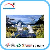 China Eco friendly PET lenticular 3d posters with Flip effect 100LPI 75LPI wholesale