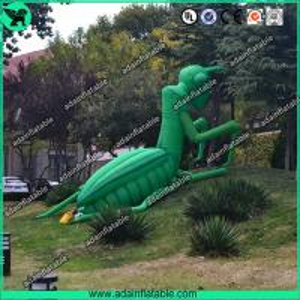 China Inflatable Mantis wholesale