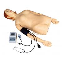 China Female Half - Body Palpation Simulator with Blood Pressure Measurement for School , Hospital on sale