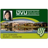 China IC smart card RFID ISO PVC 13.56 MHZ Smart Card For Office Attendence wholesale
