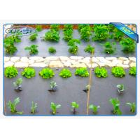 China Eco-friendly 30gsm Black Color Non woven weed control fabric For Vegetables wholesale