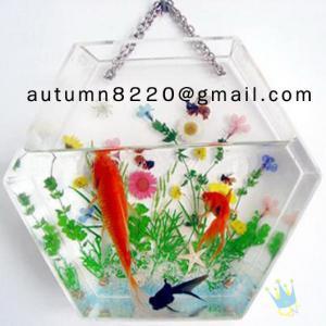 China Fashion cylinder acrylic fish aquarium wholesale
