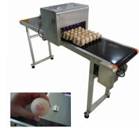 China Electronic Smart Eggs Edible Image Printer For Batch Number / Expiration Date wholesale